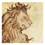 lion3